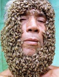 el hombre abeja